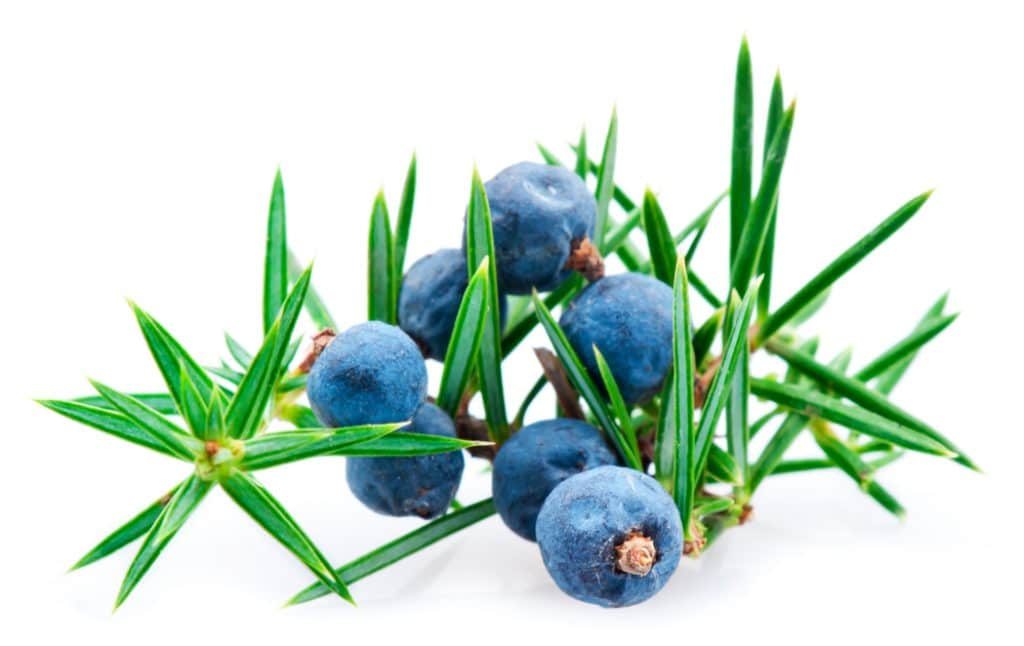 Juniper essential oil for fibromyalgia
