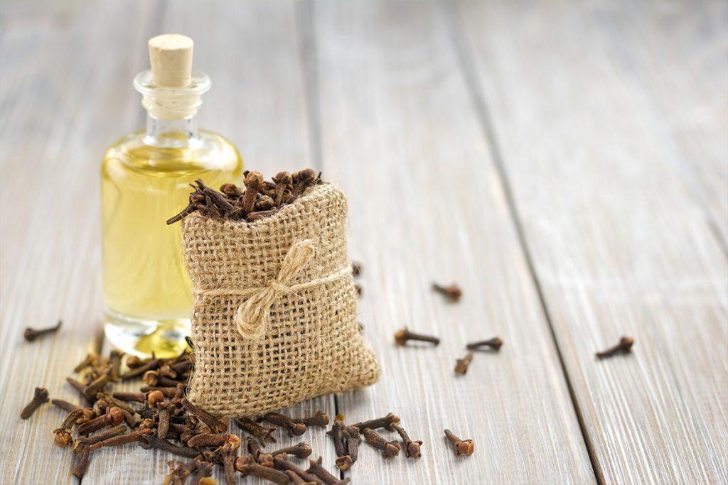 Clove Essential Oils for Allergies