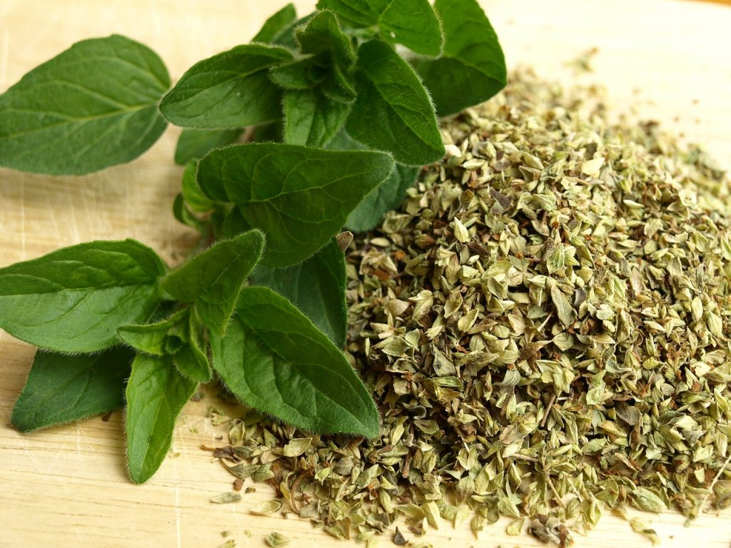 Oregano essential oil for acne