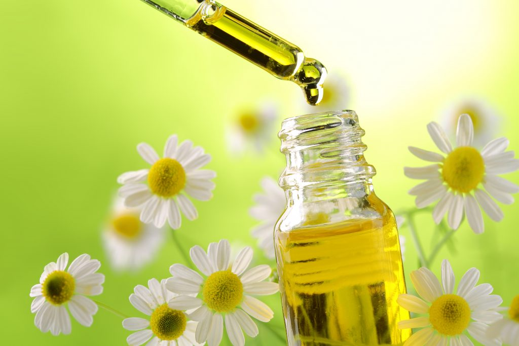 Roman/German chamomile essential oil for gout