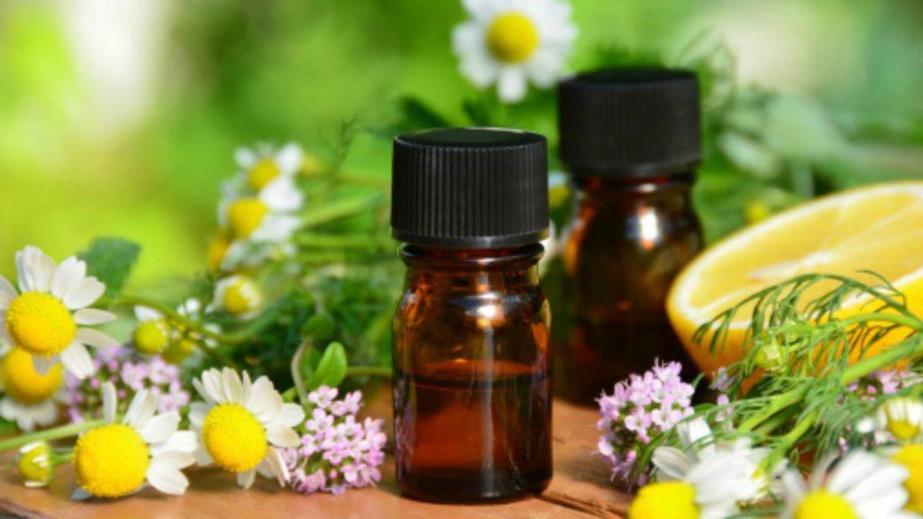 Chamomile oil: