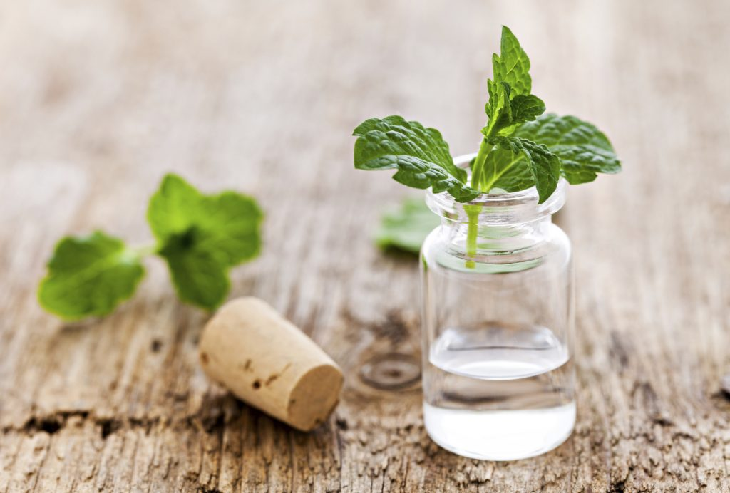 Peppermint essential oil for fibromyalgia