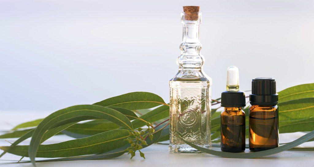 Eucalyptus Essential Oils for Allergies