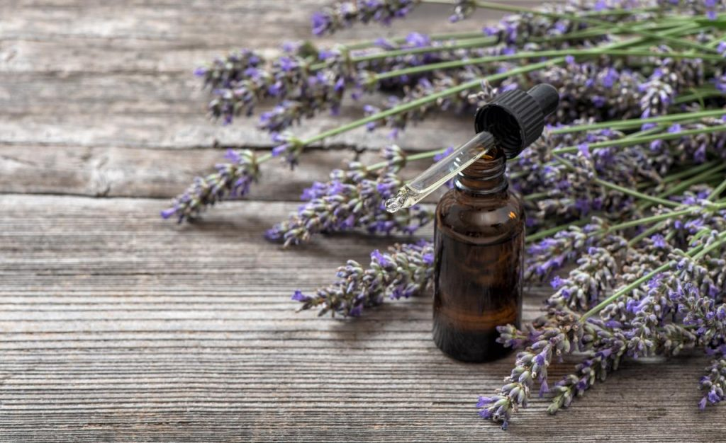 Lavender Essential Oil for Back Pain