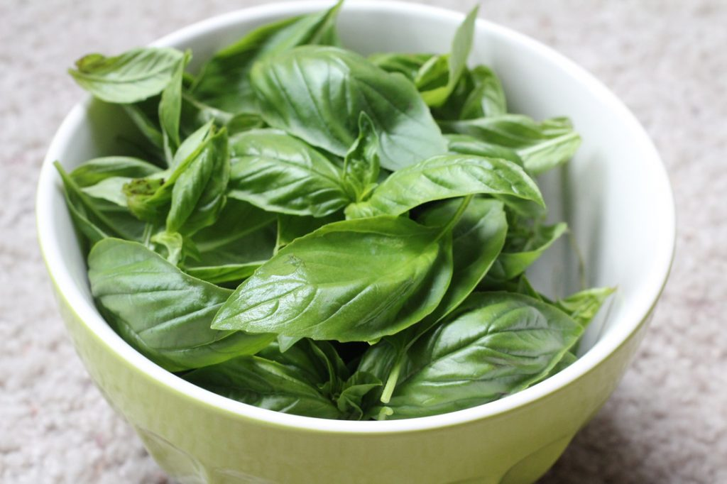 Basil essential oil for energy