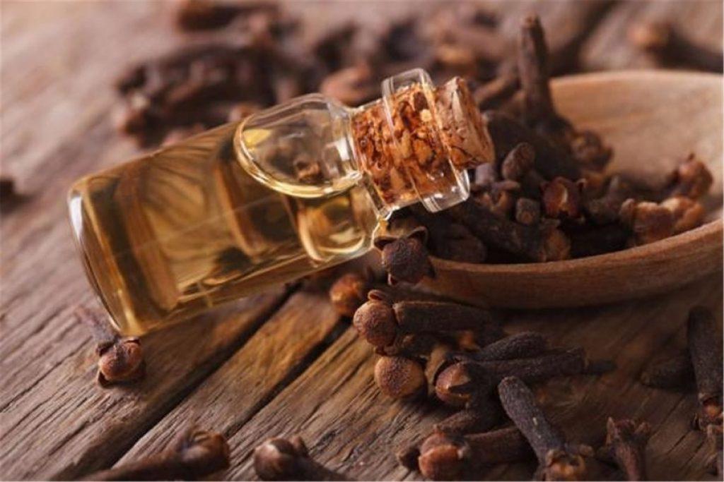 Clove essential oil for menstrual cramps