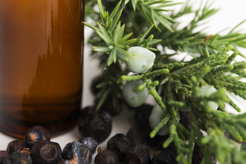 Juniper essential oil for Itchy skin