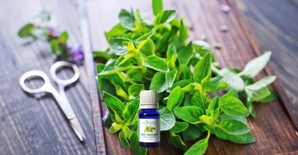 Marjoram essential oil for menstrual cramps