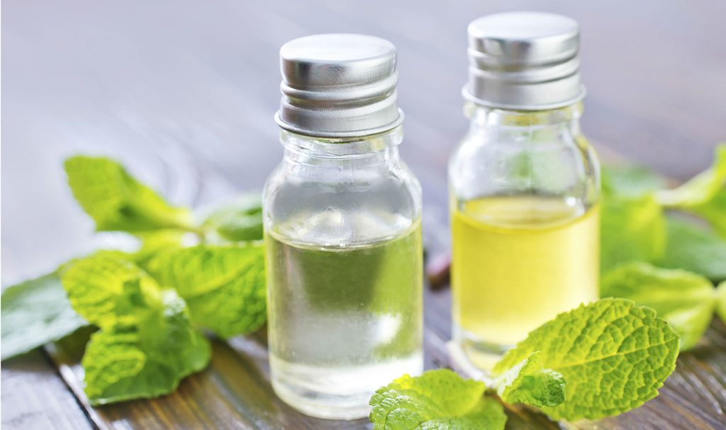 Peppermint essential oil for cold sores