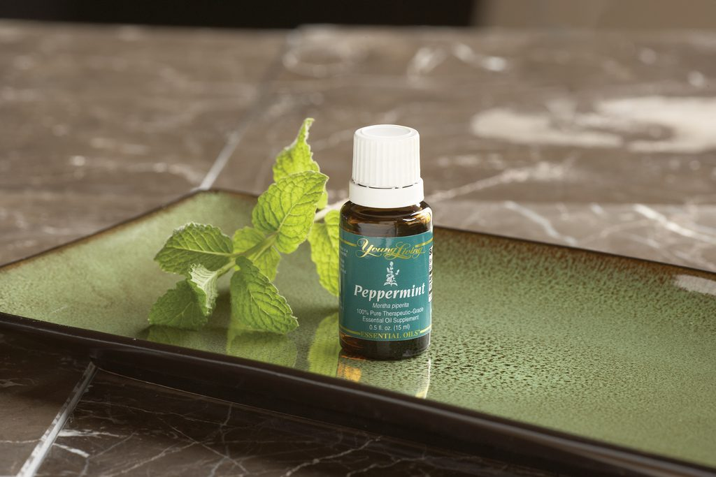 Peppermint essential oil for sunburn