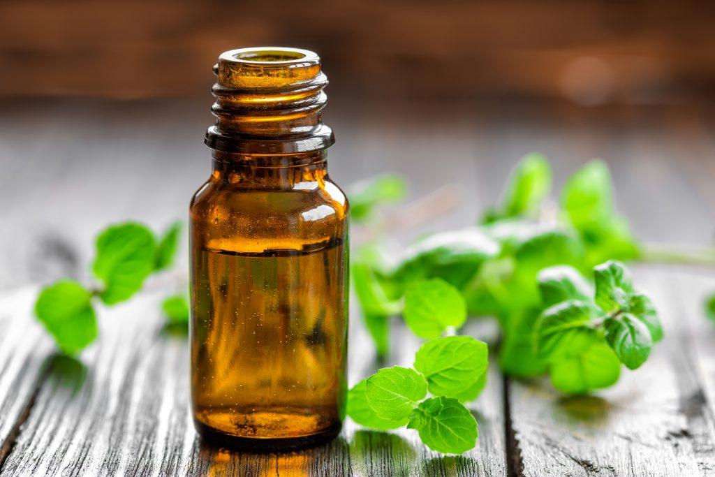 Peppermint oil for fleas