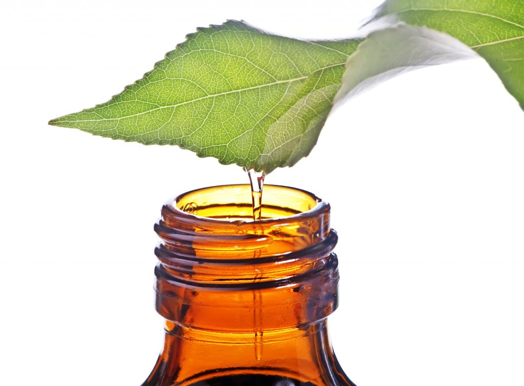 Tea tree essential oil for toothache
