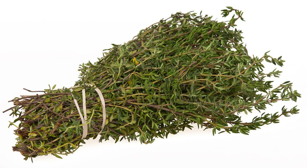 Thyme Essential Oils for Snoring