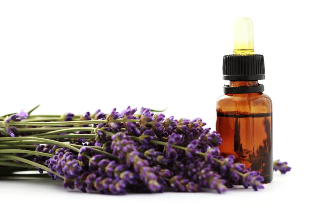 Lavender essential oil for Insomnia