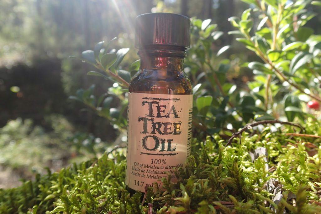Tea tree oil for ringworm