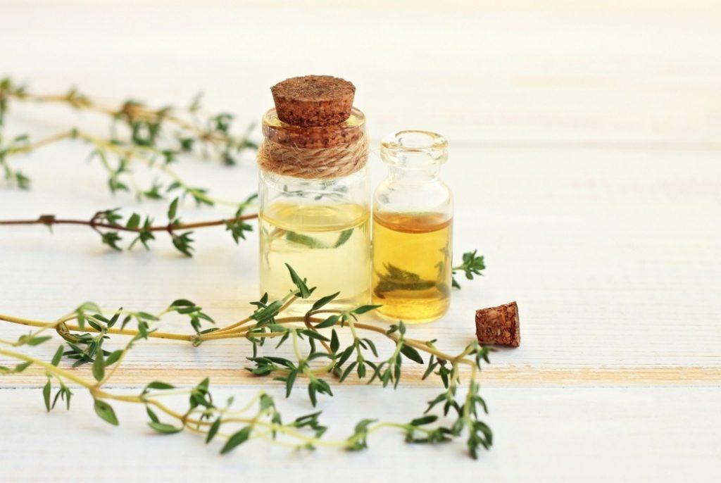 Thyme essential oil for toenail fungus