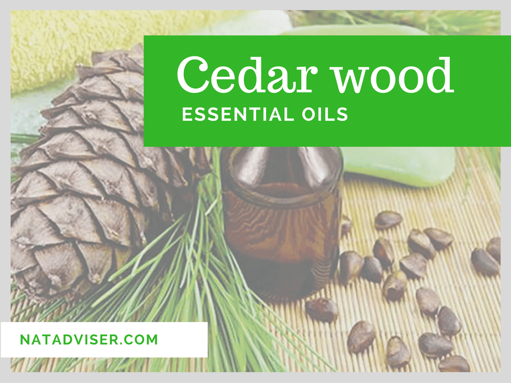 Cedar wood Essential Oils