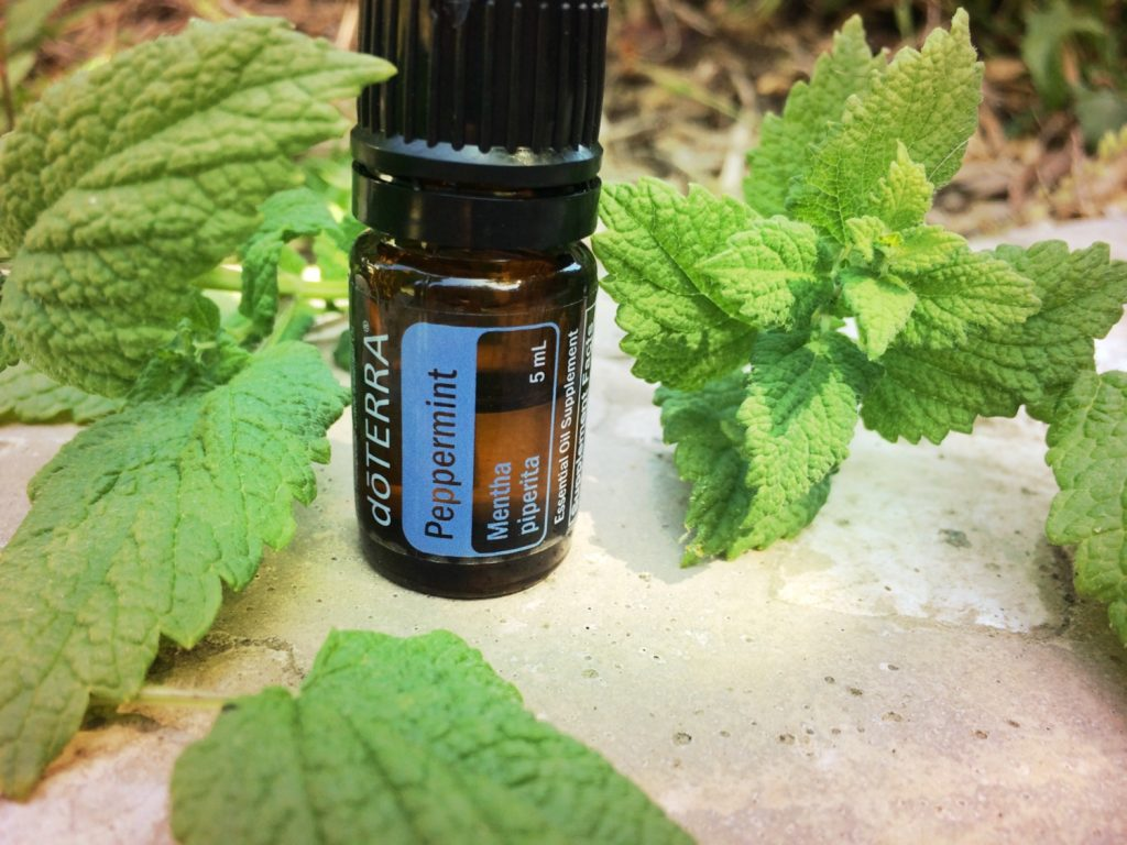 Peppermint essential oil for hives