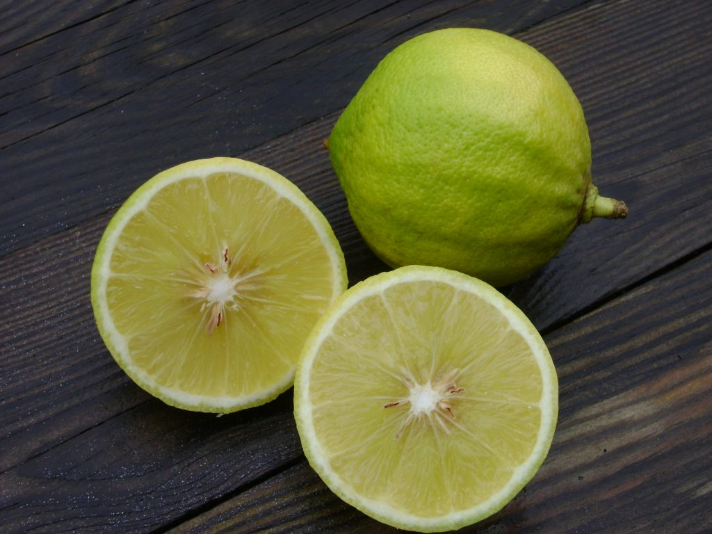 Bergamot essential oil For Lungs