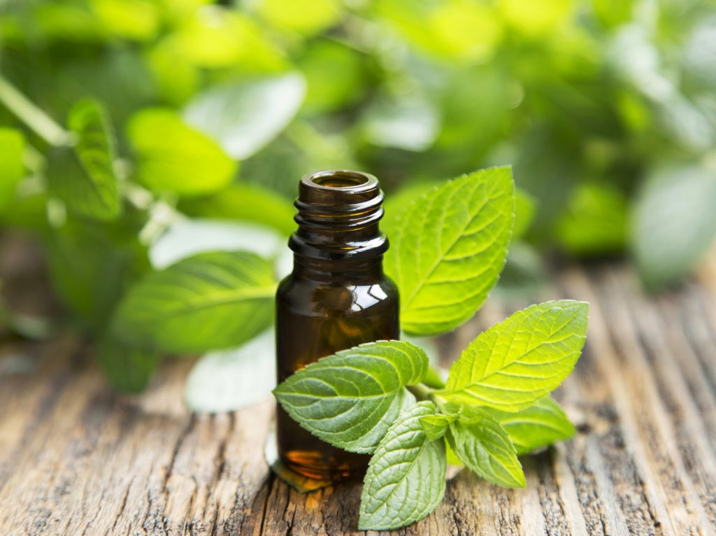 Peppermint Essential Oil for Shingles