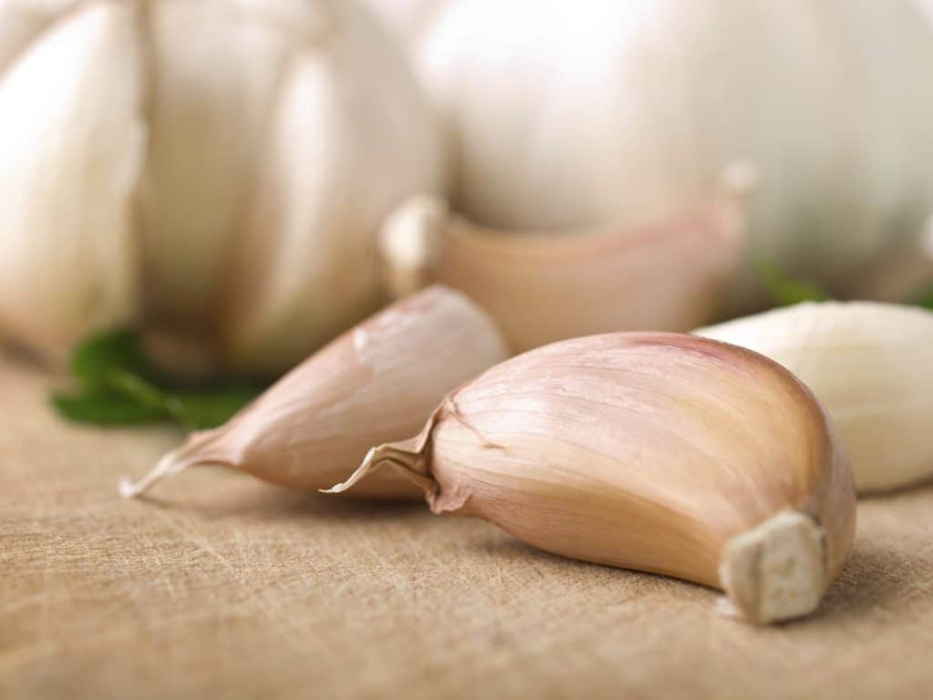 Garlic natural ringworm treatment