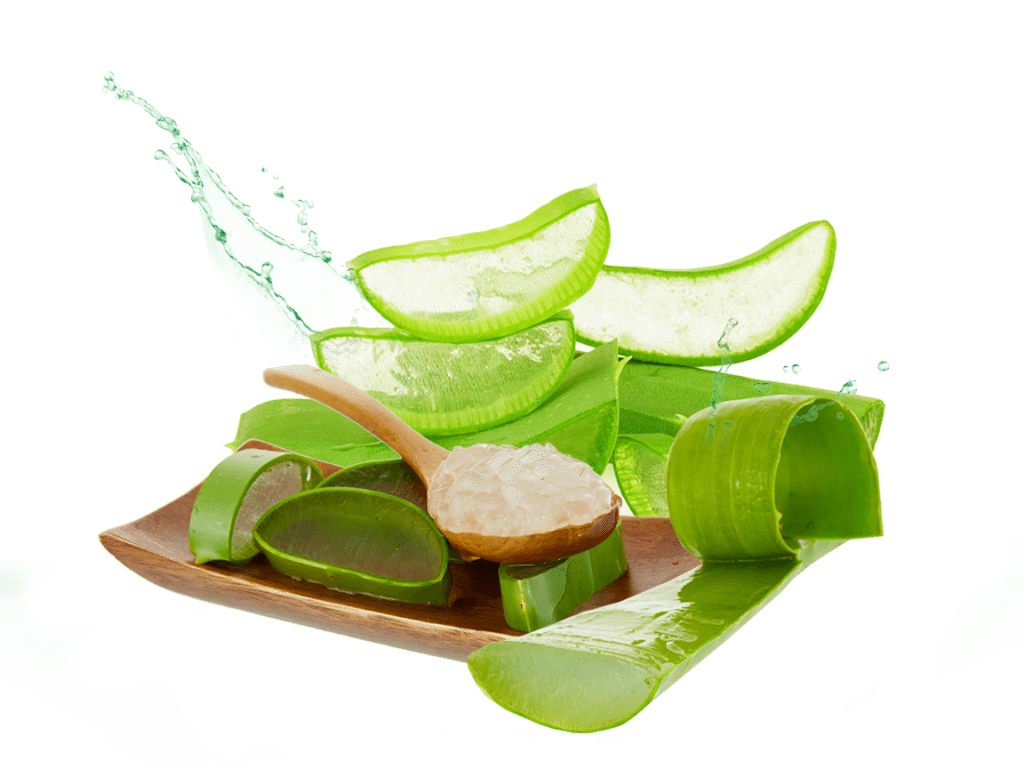 Aloe Vera natural ringworm treatment