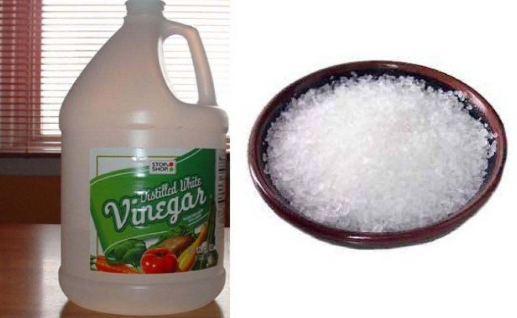 Vinegar and salt to treat ringwrom