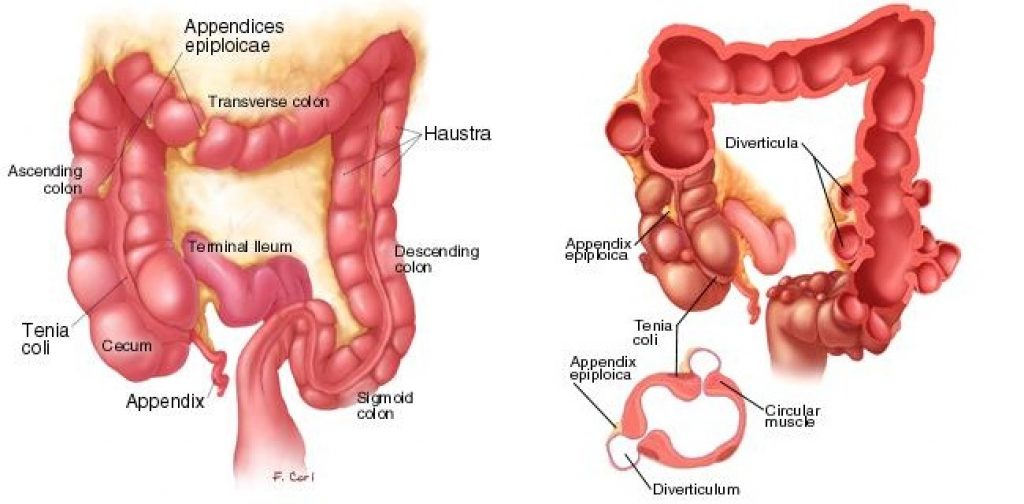 Lower Left Abdominal Pain In Men Auses And Symptoms