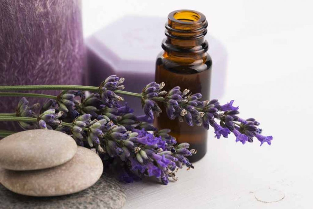 Lavender essential oil for stretch marks