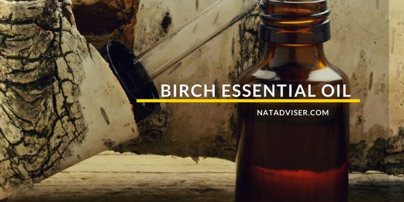 Birch Essential Oil: Benefits, Natural Recipes, and Tips
