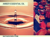 Amber Essential Oil: Best Amber Oil Facts, Benefits, & Recipes You Must Know