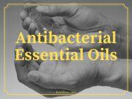 Antibacterial Essential Oils: Natural Alternatives for Antibiotic Drugs