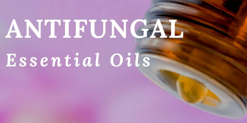 Best Antifungal Essential Oils: Review, Alternative Treatments and Recipes