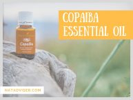 Copaiba Essential Oil: Uses And Benefits