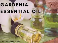 Gardenia Essential Oil Benefits: Aromatherapy and Topical Application Recipes