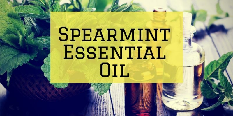 Spearmint Essential Oil: The Ultimate Guide to the Essential Oil of Spearmint