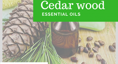 Cedar wood Essential Oil Review, Application and Useful Tips