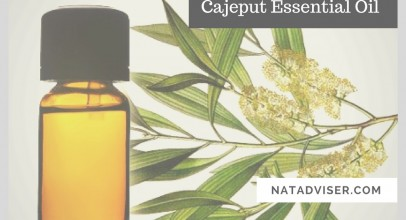 Health Benefits of Cajeput Essential Oil, Useful Tips and Natural Recipes