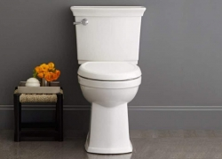 Best Toilet – Overall Top Performing Toilets of 2018
